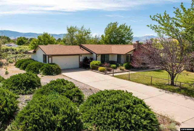 450 Riparian Way, Carson City, NV 89701 (MLS #180010160) :: Joshua Fink Group