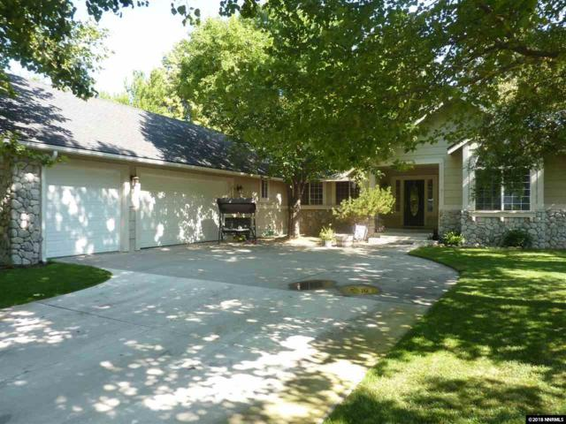 1052 Aster, Minden, NV 89423 (MLS #180010273) :: NVGemme Real Estate