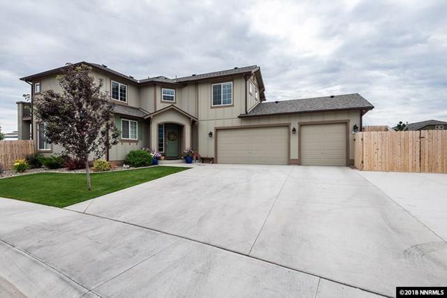 1533 Snaffle Bit Drive, Gardnerville, NV 89410 (MLS #180010294) :: NVGemme Real Estate