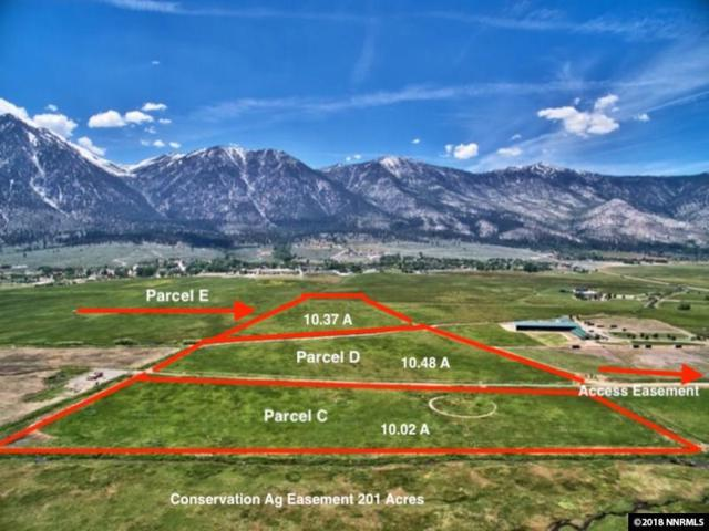 Parcel C Run Around Ranch, Gardnerville, NV 89460 (MLS #180010361) :: Harcourts NV1