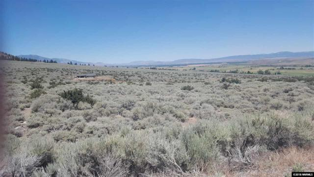 #5 Hawkins Peak Rd., Woodfords, Ca, CA 96120 (MLS #180010438) :: Mike and Alena Smith | RE/MAX Realty Affiliates Reno