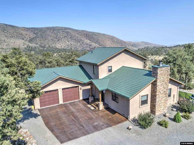 921 Stoen Ct, Gardnerville, NV 89410 (MLS #180010442) :: NVGemme Real Estate