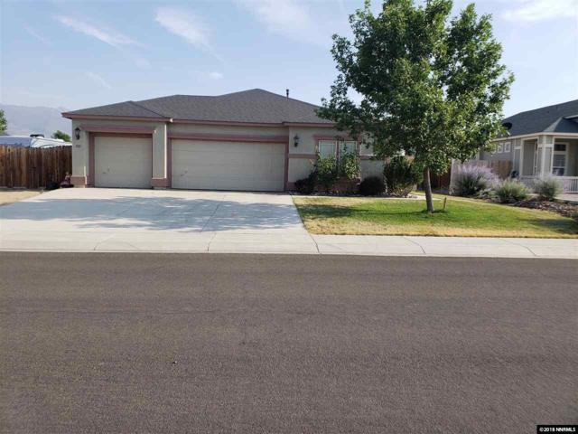 1121 Cheatgrass, Dayton, NV 89403 (MLS #180010491) :: NVGemme Real Estate