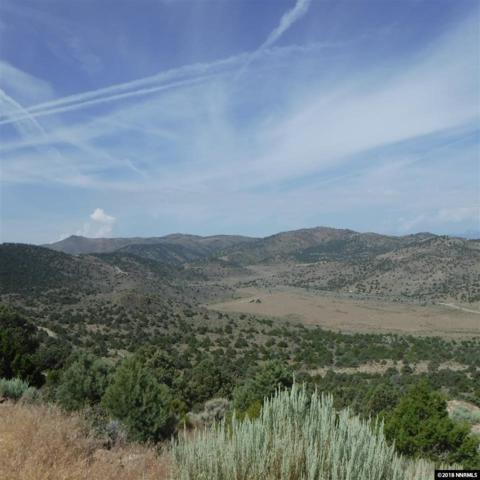 22900 Mountaintop Road, Reno, NV 89521 (MLS #180010740) :: Mike and Alena Smith | RE/MAX Realty Affiliates Reno