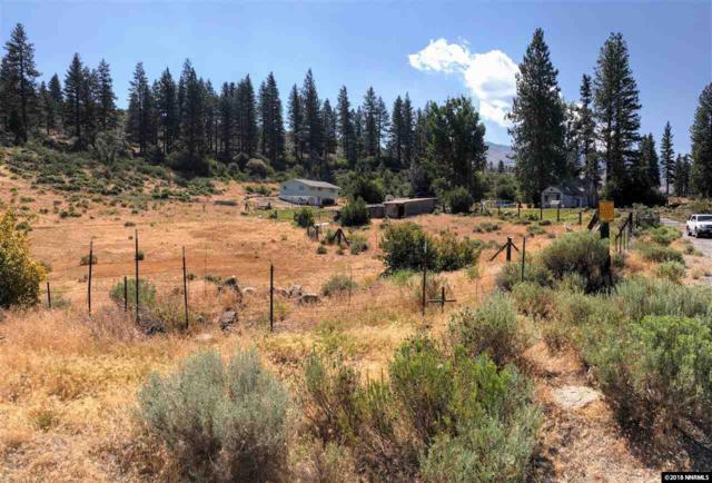 540 Gavica Lane, Reno, NV 89439 (MLS #180010875) :: NVGemme Real Estate
