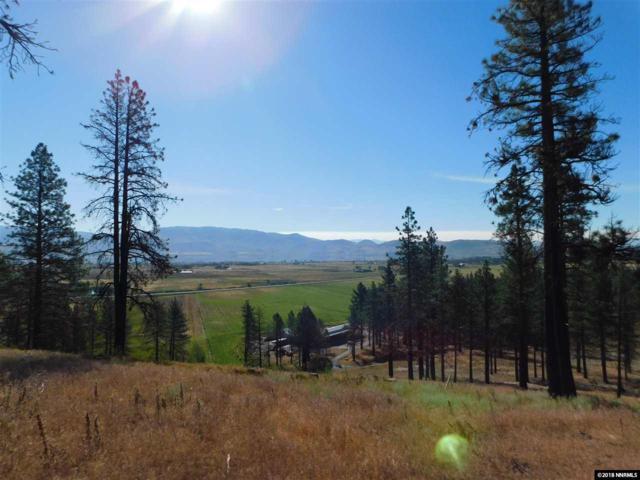 5215 Franktown, Washoe Valley, NV 89704 (MLS #180010893) :: NVGemme Real Estate