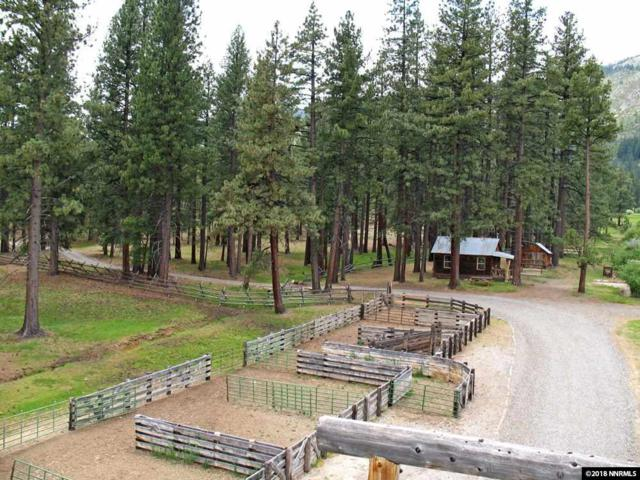 19320 Highway 89, Woodfords, Ca, CA 96120 (MLS #180010906) :: NVGemme Real Estate