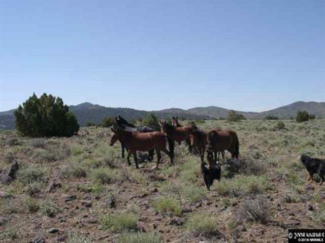 171S Virginia Ranches, Reno, NV 89521 (MLS #180010995) :: Mike and Alena Smith | RE/MAX Realty Affiliates Reno