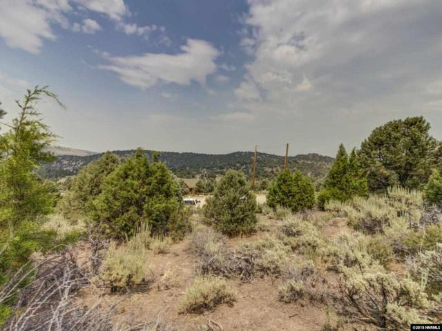 21905 Panhandle, Virginia City, NV 89521 (MLS #180011588) :: Mike and Alena Smith | RE/MAX Realty Affiliates Reno