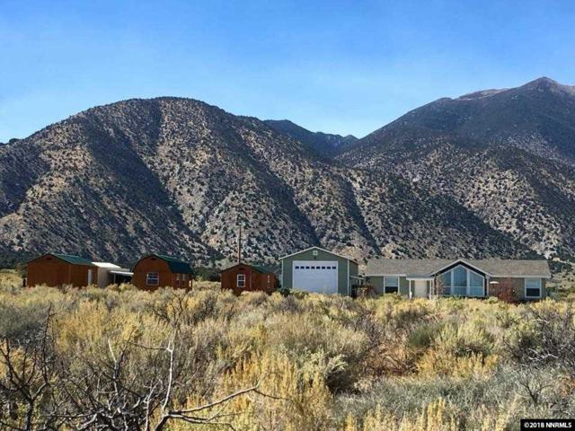 22 Terrell Ln, Wellington, NV 89444 (MLS #180011669) :: Mike and Alena Smith | RE/MAX Realty Affiliates Reno