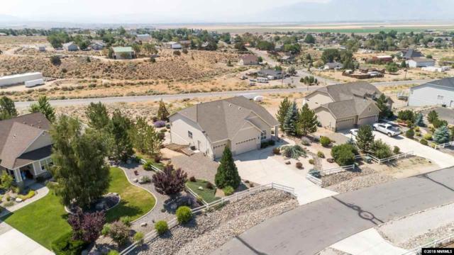 1688 Chiquita Circle, Minden, NV 89423 (MLS #180012259) :: Harpole Homes Nevada
