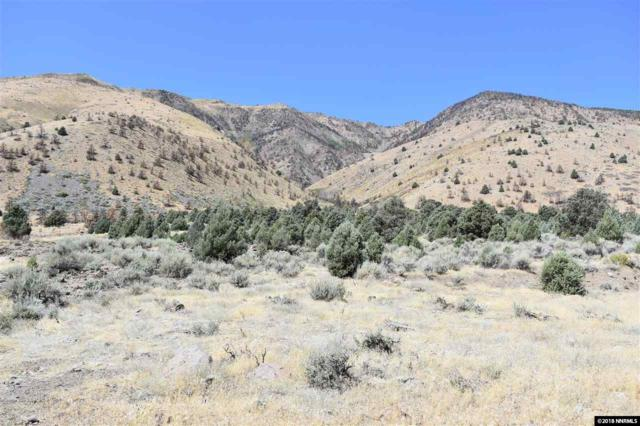 1980 S Hwy 395, Gardnerville, NV 89410 (MLS #180012845) :: The Mike Wood Team