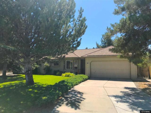310 Rosetta Stone, Sparks, NV 89441 (MLS #180013037) :: Chase International Real Estate
