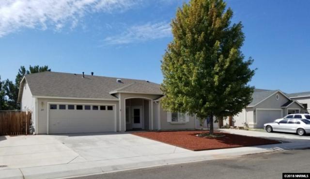 219 Bobcat, Dayton, NV 89403 (MLS #180013358) :: Ferrari-Lund Real Estate