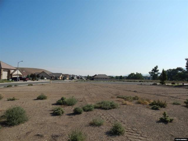 403 Chianti Way, Dayton, NV 89403 (MLS #180013420) :: Chase International Real Estate