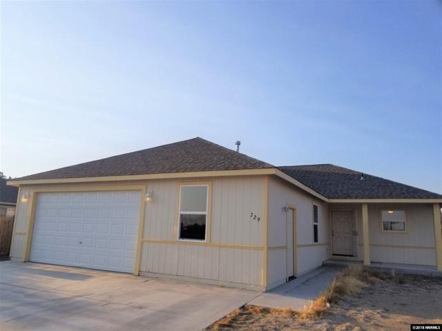 729 Megan Way, Fallon, NV 89406 (MLS #180013835) :: Chase International Real Estate