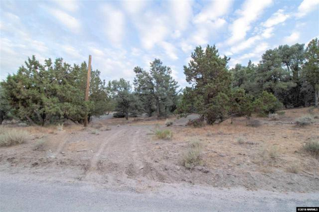 21555 Sazarac Rd., Reno, NV 89521 (MLS #180013889) :: Chase International Real Estate