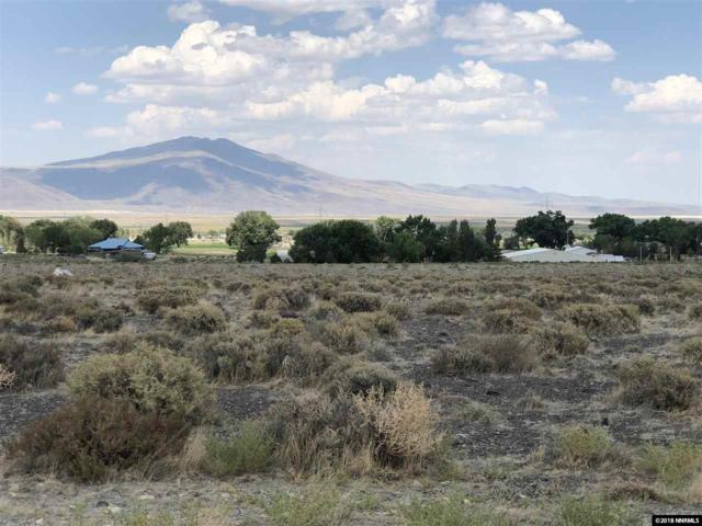 3450 S Canal, Fernley, NV 89408 (MLS #180014241) :: Chase International Real Estate