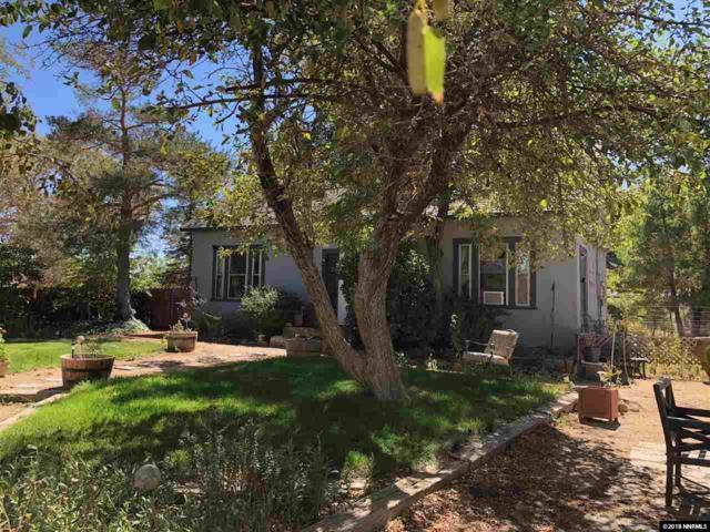 144 Old Washoe Drive, Washoe Valley, NV 89704 (MLS #180014256) :: Ferrari-Lund Real Estate