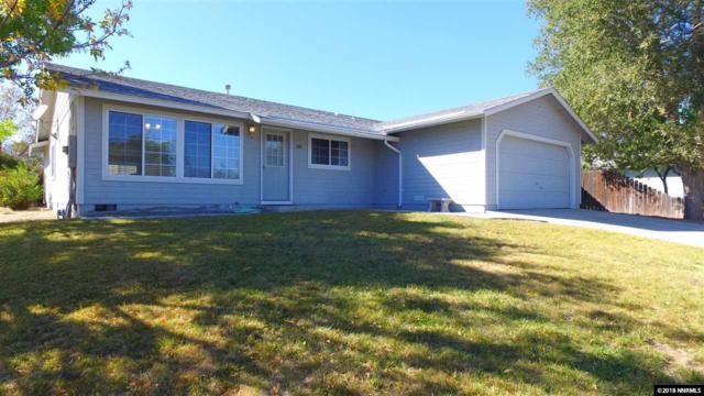 561 Yellowjacket Road, Dayton, NV 89403 (MLS #180014455) :: NVGemme Real Estate
