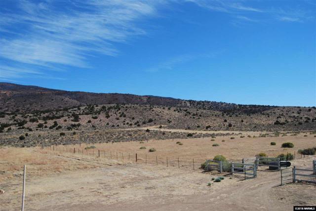 0000 Right Hand Canyon Road, Reno, NV 89510 (MLS #180014675) :: Harpole Homes Nevada