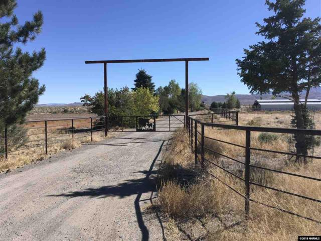 422 Hwy 338 Par 3, Wellington, NV 89406 (MLS #180014686) :: The Mike Wood Team