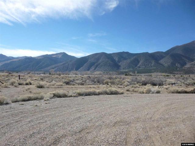 228 Artesia Ct, Wellington, NV 89444 (MLS #180014799) :: Harpole Homes Nevada