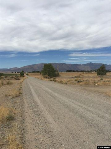 parcel D-1 Grant View, Smith, NV 89430 (MLS #180014800) :: Harcourts NV1