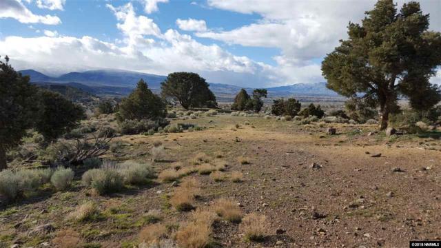 15868 Toll Road, Reno, NV 89521 (MLS #180014806) :: Harpole Homes Nevada