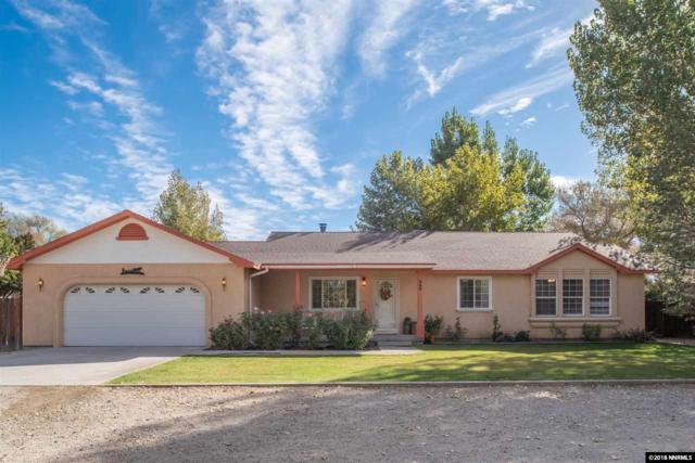389 Lewis Lane, Fallon, NV 89406 (MLS #180014909) :: Harpole Homes Nevada