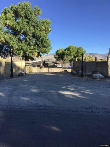 330 River Road, Dayton, NV 89403 (MLS #180014956) :: The Mike Wood Team