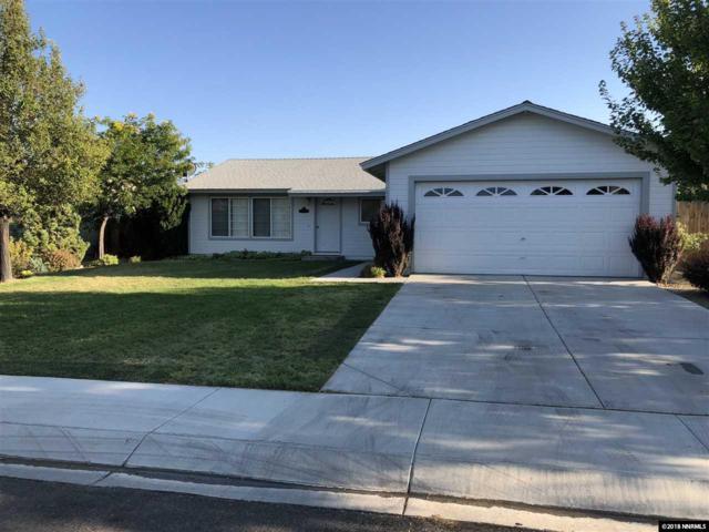 747 Monico Drive, Dayton, NV 89403 (MLS #180014972) :: Harpole Homes Nevada