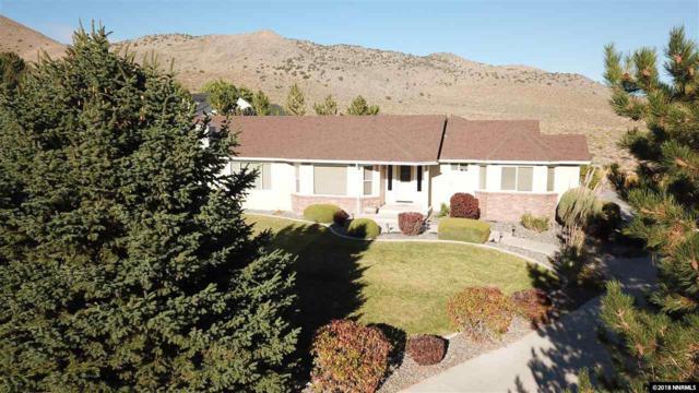 1394 Porter Dr, Minden, NV 89423 (MLS #180015301) :: Chase International Real Estate