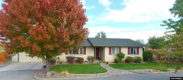 2655 Wade Street, Minden, NV 89423 (MLS #180015360) :: Chase International Real Estate