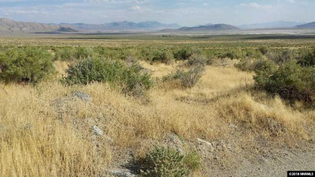 100 Granite Flats, Gerlach, NV 89412 (MLS #180015430) :: The Mike Wood Team