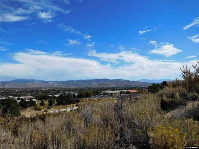3100 Murphy Dr., Carson City, NV 89703 (MLS #180015908) :: Chase International Real Estate