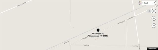 Degiorgio Ln, Winnemucca, NV 89445 (MLS #180015957) :: Marshall Realty