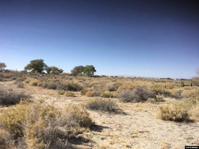 Desert Hill Loop, Fallon, NV 89406 (MLS #180016146) :: Harcourts NV1