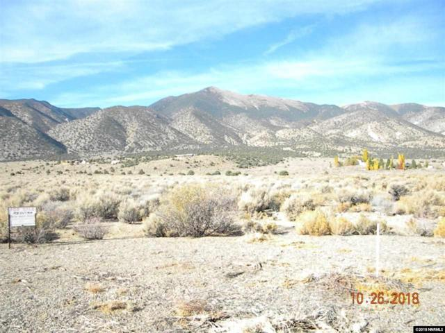 PARCEL C Landers Lane, Wellington, NV 89444 (MLS #180016151) :: Harcourts NV1