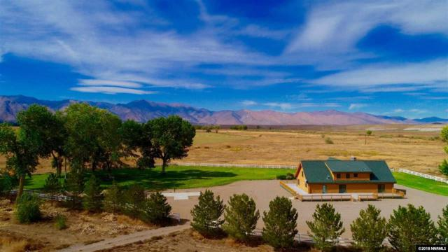 250 Olson Ranch Rd, Smith, NV 89430 (MLS #180016279) :: Harcourts NV1