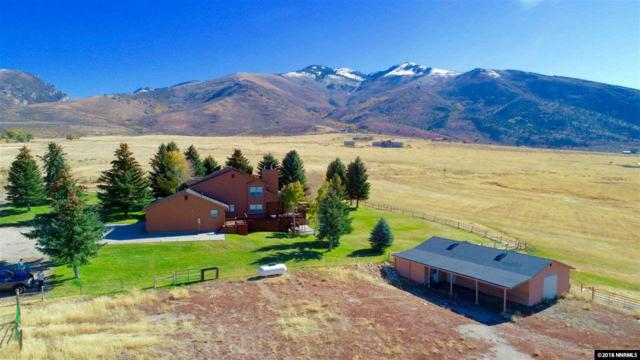 000 Mountain View Dr, Lamoille, NV 89801 (MLS #180016282) :: The Mike Wood Team