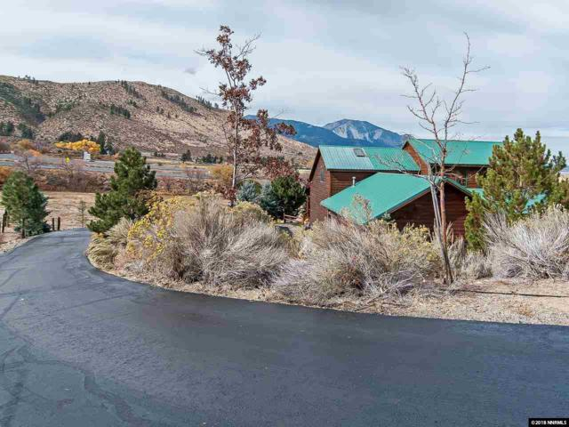 290 Duck Hill Road, Washoe Valley, NV 89704 (MLS #180016484) :: Marshall Realty