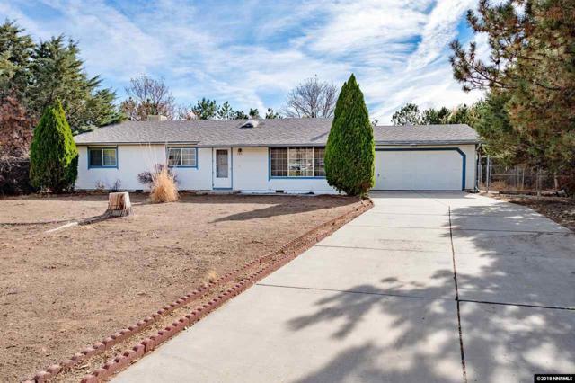 705 Ophir Ct, Dayton, NV 89403 (MLS #180016646) :: NVGemme Real Estate