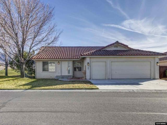201 La Costa Ave, Dayton, NV 89403 (MLS #180016664) :: Harcourts NV1