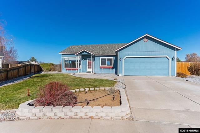 2647 Wildrye Ct, Minden, NV 89423 (MLS #180016771) :: NVGemme Real Estate