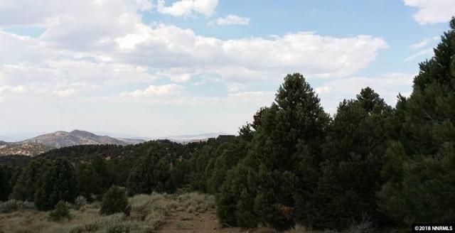 21420 Graves Rd, Reno, NV 89521 (MLS #180016794) :: Mike and Alena Smith | RE/MAX Realty Affiliates Reno