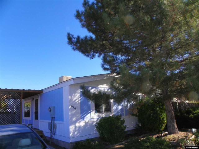 616 Jenni Lane, Moundhouse, NV 89706 (MLS #180016827) :: NVGemme Real Estate