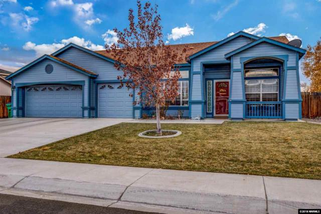 1319 Grassland, Dayton, NV 89429 (MLS #180017326) :: Vaulet Group Real Estate