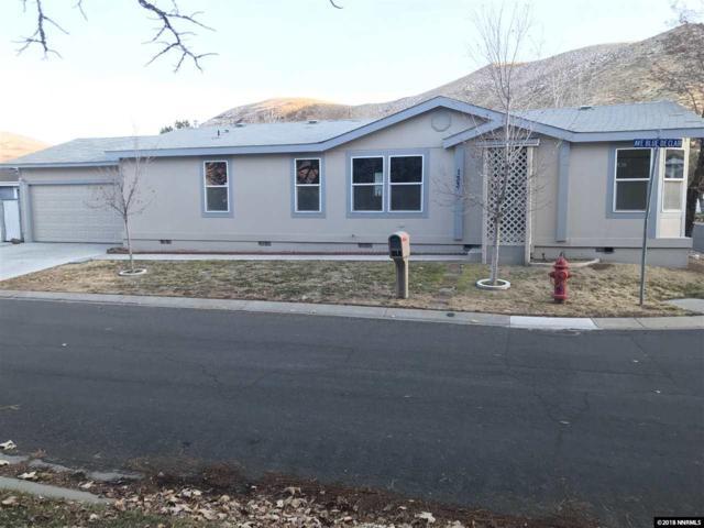 133 Ave De La Bleu De Clair, Sparks, NV 89434 (MLS #180017667) :: Vaulet Group Real Estate