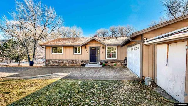 210 Rhodes Rd, Reno, NV 89521 (MLS #180017777) :: The Mike Wood Team